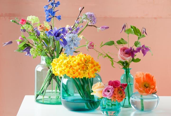 Zeer Mooie bloemen in smerig water - Bloemen van Loes - Bloemen van Loes &IV56